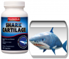 PACHET ECONOMIC - Shark Cartilage